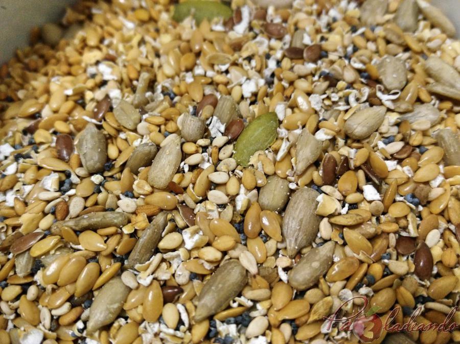 semillas (1)